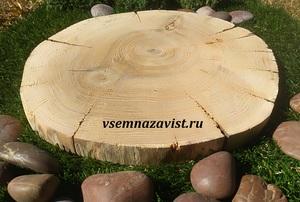 Спил дуба шлифованный 31-40 см