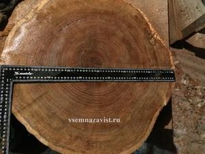 Спил дуба шлифованный 51-60см