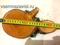 Спил березы нешлифованный 16-20 см