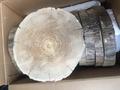 Спил дуба шлифованный  21-30 см