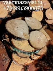 Спил березы нешлифованный 11-15 см