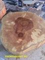 Спил дерева купить. Березовый спил заказать с доставкой