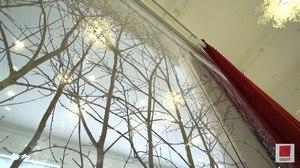 Ветки дерева для декора